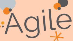 Since 2013 we work in agil teams.